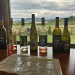 Tasting with a view of Flathead Lake!