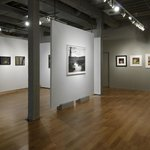 Main Gallery, Center Forward Exhibit, 2013