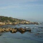 17 MD Monterey