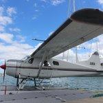 Seaplane in Dock