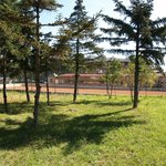 Play football and voleyball here