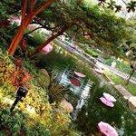 Центральный парк Гонконга