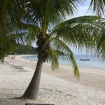 Bij Long Bay resort