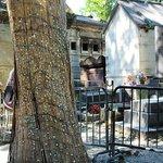 Túmulo de Jim Morrison e a nojenta árvore cheia de chicletes a sua frente