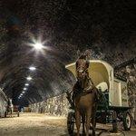 Horse & Milk Wagon