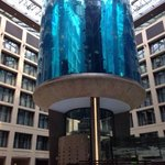 L'aquarium, impressionnant en vrai..