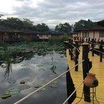 Bucolic lagoon