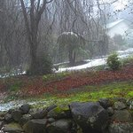 Woolrich Retreat Gardens