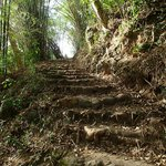 """jaco's steps (the sign at the road calls it """"jack's walk"""")"""