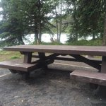 Handicapped Accessible picnic table