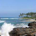 インド洋を眺める