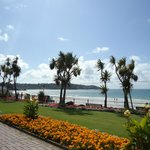 Beautiful seafront gardens