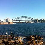 Panoramic view of harbour from Botanical Gardens
