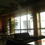 "Foto de wombats CITY HOSTEL VIENNA ""The Base"""