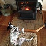April in front of the fire August 2014