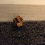 Dried food....