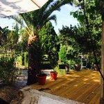 Photo of Quinta da Danca, Lda