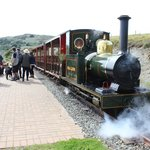 The steam loco Sea Lion