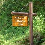 Mabel Lake Provincial Park
