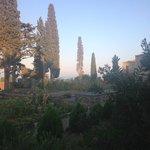 View from outdoorbar/restaurant