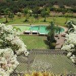 vue du toit terrasse sur la piscine