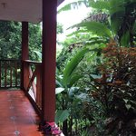 Sarrounded by gorgeous jungle and rolling hills.  The bird calls in the morning were quite somet