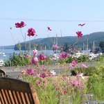 View of Salt Spring's Ganges Harbour,Harbour House Restaurant  |  121 Upper Ganges Rd, British C