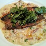 Sea bass and risotto