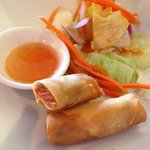Spring roll and salad