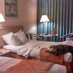 habitacion de dos camas dobles