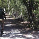 Los senderos de bicicleta son un clásico del Oleta River Park