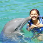 getting a kiss from the dolphin