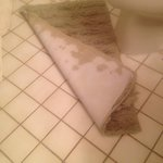 Worn Bathroom rug
