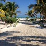 zona de camastro con vista a la playa