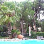 Espace piscine, calme, détente...