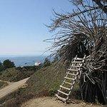 The Human Nest - private, unusual, fun
