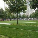 Un poco de verde en el parque