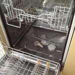 dishwasher on arrival