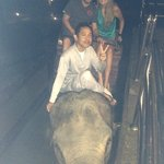 Being picked up from our hotel room for dinner by an elephant!