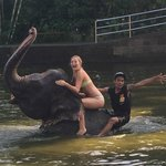 Absolutely loved bathing the elephants...