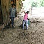 On the farm...