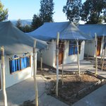 Tents at Chail Villas