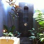 amazing outdoor bathroom