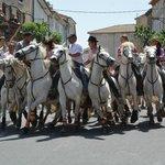 Bull run in streets of Quarante
