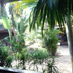 Ausblick Garden View Chalet