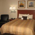 Studio Suite with 1 Queen Bed
