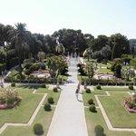giardinii