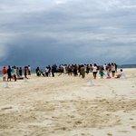 Party on the sandbank