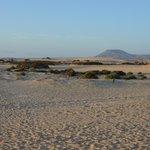 Autre vue des dunes