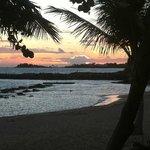 Tamarind Sunset